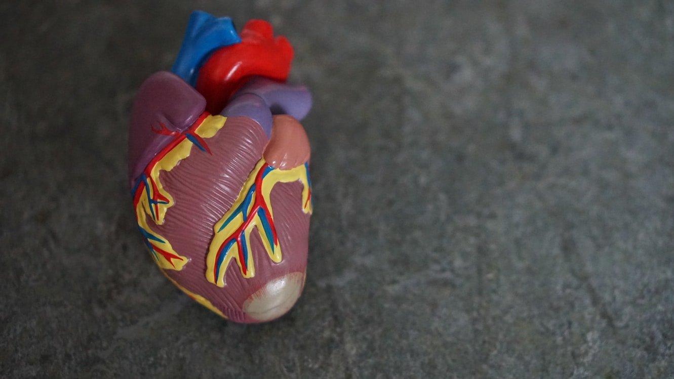 mensen-hart